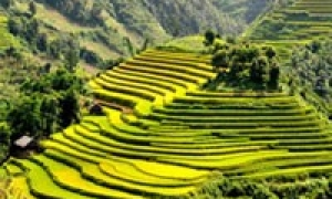 Travel Vietnam 17 days